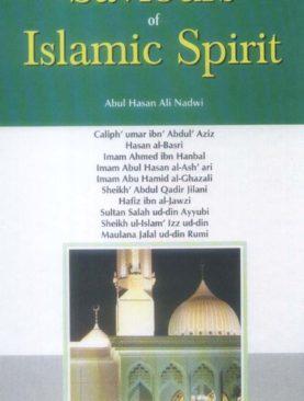 Saviours of Islamic Spirit (vlo 3)