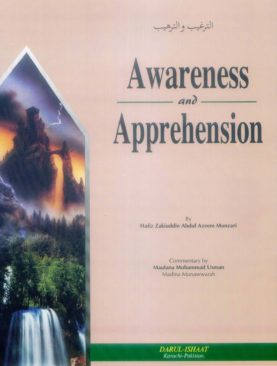 Awareness and Apprehension